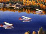 Ely Air Fleet